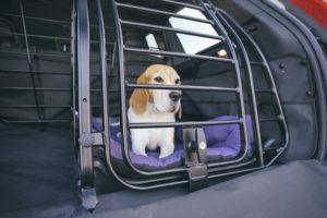 Volvo XC90 La Linea Hundebox Hund Dog